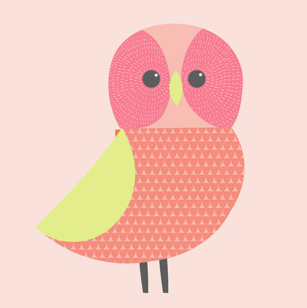 Wall Art - Photograph - Cute Illustration Of Pink And Green Owl by Ikon Ikon Images