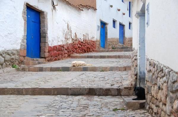 Photograph - Cuzco Streets by Cascade Colors