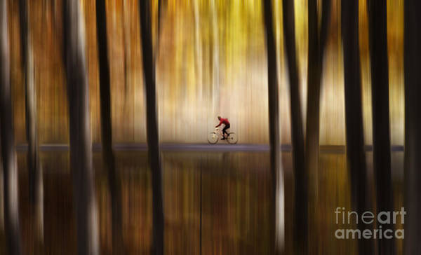 Wall Art - Photograph - Cyclist In The Forest by Yuri San
