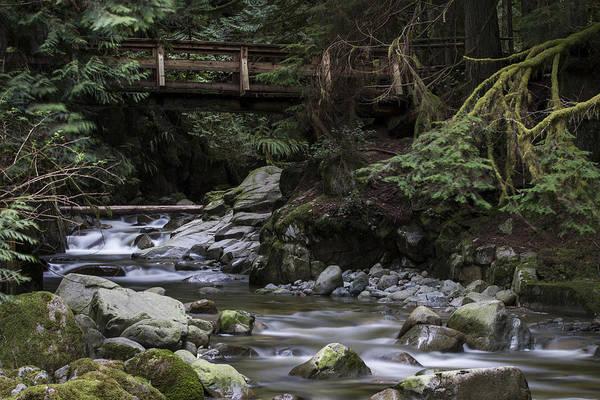 Photograph - Cypress Falls by Windy Corduroy