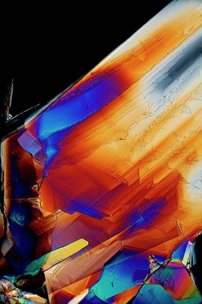 Compound Photograph - Cysteine Crystals by Antonio Romero