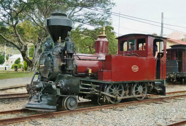 Rod Taylor Photograph - D140 Steam Locomotive  by Steve Taylor