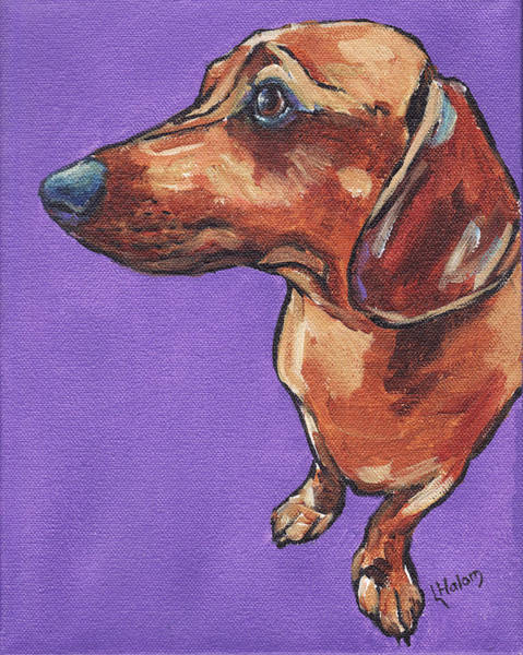 Painting - Dachshund by Greg and Linda Halom