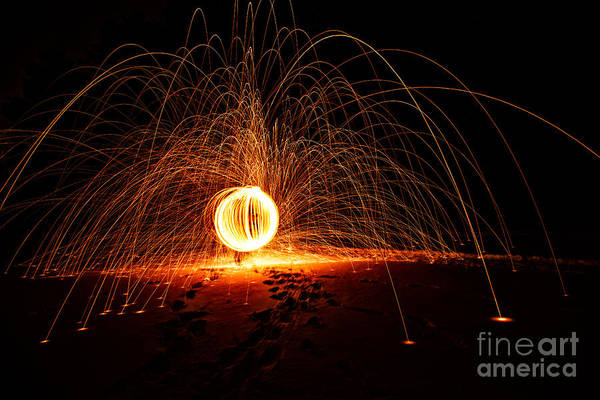 Steel Wool Photograph - Daddy Long Leg by Todd Bielby