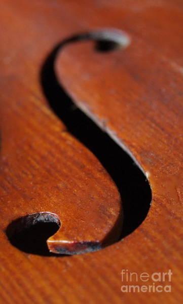 Photograph - Dad's Violin - 10 by Vivian Martin