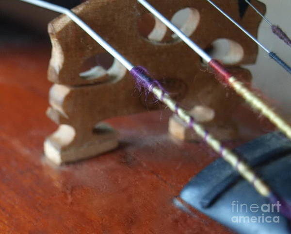 Photograph - Dad's Violin - 21 by Vivian Martin