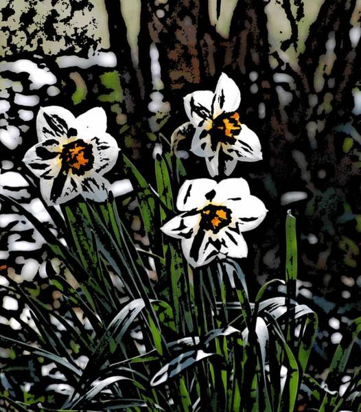 Wall Art - Digital Art - Daffodil by David Lane