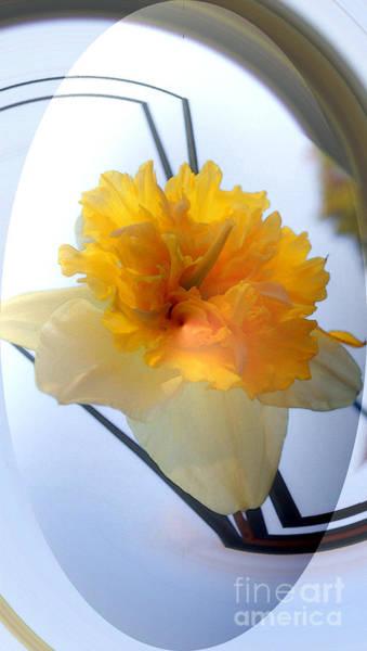 Digital Art - Daffodil Double Bubble by Kim Pate