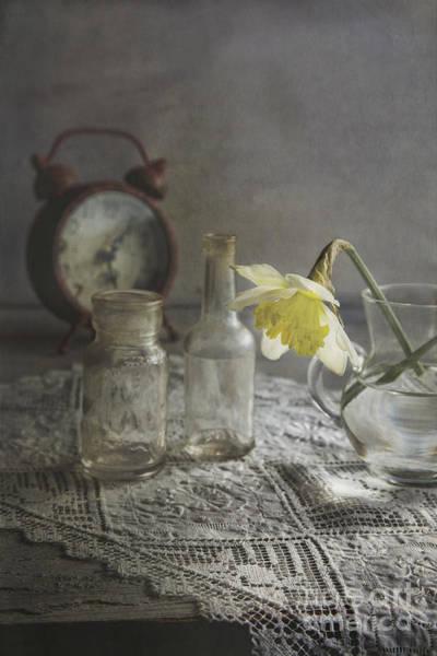 Fragrance Photograph - Daffodil by Elena Nosyreva