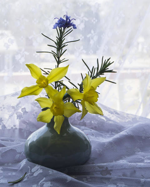 Photograph - Daffodils And Rosemary In A Vase by MM Anderson