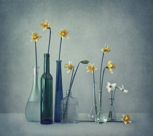 Flask Wall Art - Photograph - Daffodils by Dimitar Lazarov -