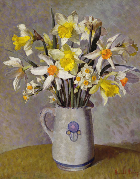 Wall Art - Painting - Daffodils  by Harold Harvey