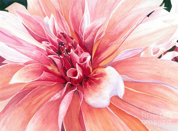 Wall Art - Painting - Dahlia Dazzler by Barbara Jewell
