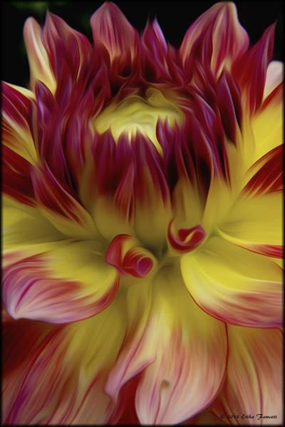 Photograph - Dahlia Red Yellow by Erika Fawcett