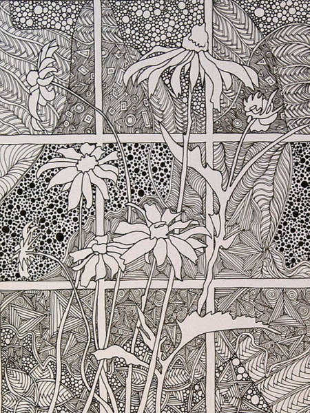 Drawing - Daisies In A Window by Terry Holliday