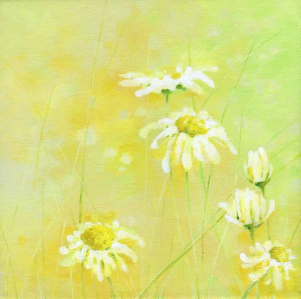 Wall Art - Painting - Daisies by Natasha Denger