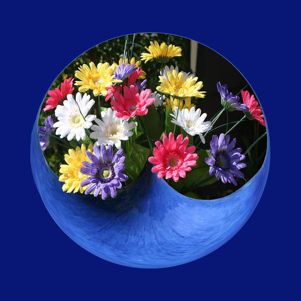 Photograph - Daisy Bowl by Jim Baker