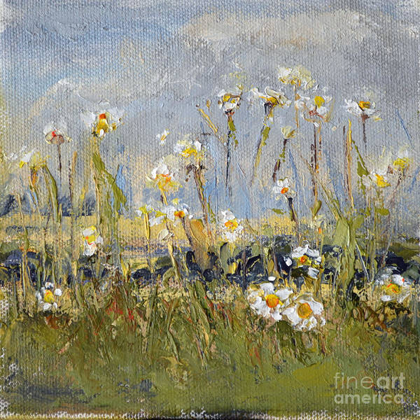 Wall Art - Painting - Daisy Field by Patricia Caldwell