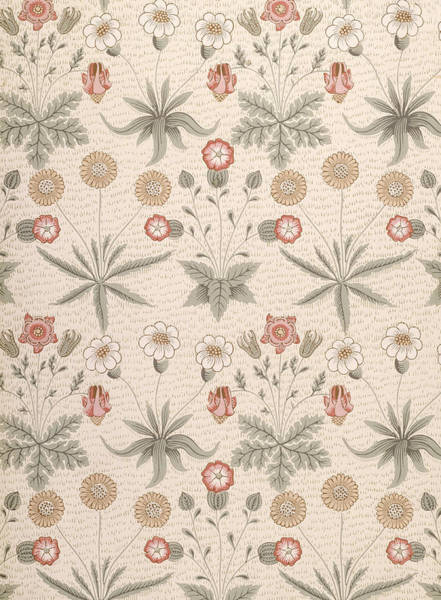 Wall Art - Drawing - Daisy, First William Morris Design by William Morris