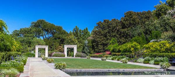 Photograph - Dallas Arboretum by Ross Henton