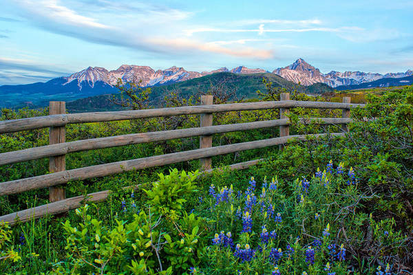 Photograph - Dallas Divide Fenceline by Rick Wicker