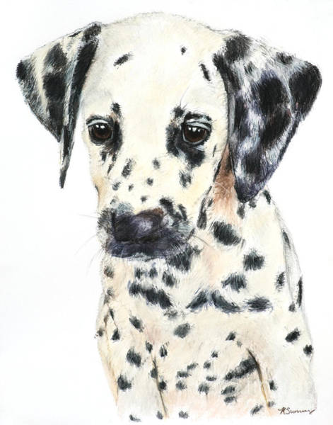 Art Print featuring the painting Dalmatian Puppy Painting by Kate Sumners