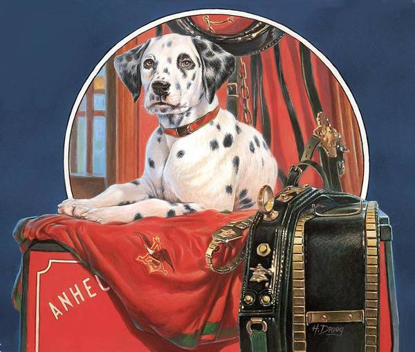 Painting - Dalmation Ab by Hans Droog
