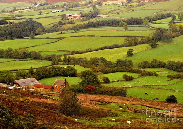 Danby Dale Yorkshire Moors Art Print