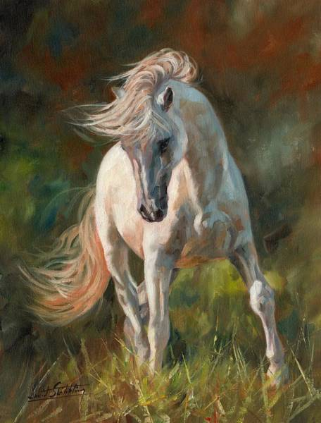 White Horse Painting - Dance Like No One Is Watching by David Stribbling