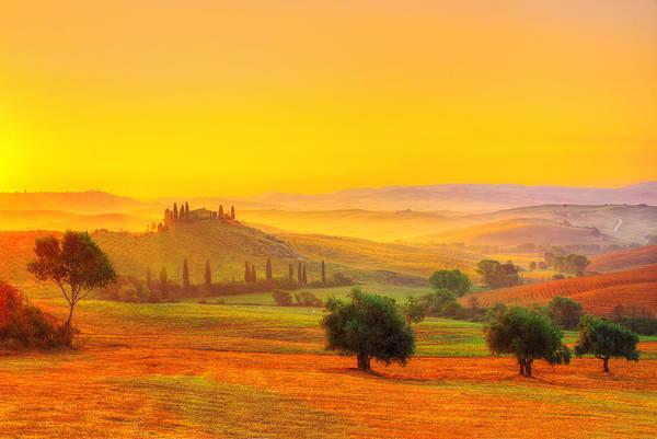 Tuscany Vineyards Wall Art - Photograph - Dance Of Dawn by Midori Chan