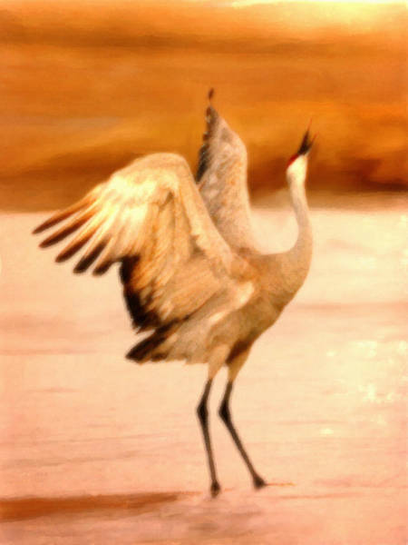 Painting - Dance Of The Crane by Dennis Buckman
