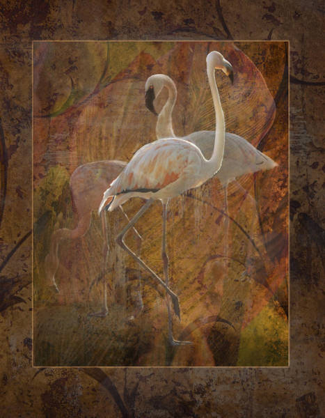 Dance Of The Flamingos Art Print