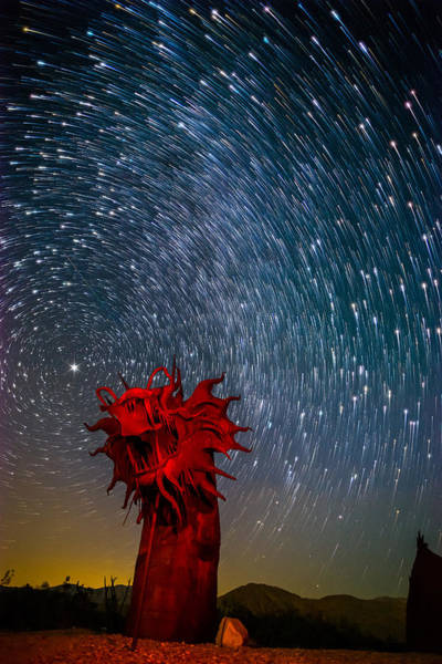 Photograph - Dance Of The Star Serpent by Tassanee Angiolillo