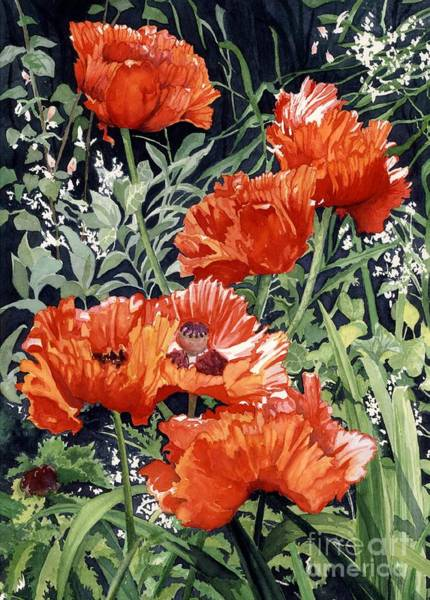 Wall Art - Painting - Dancing Poppies by Barbara Jewell