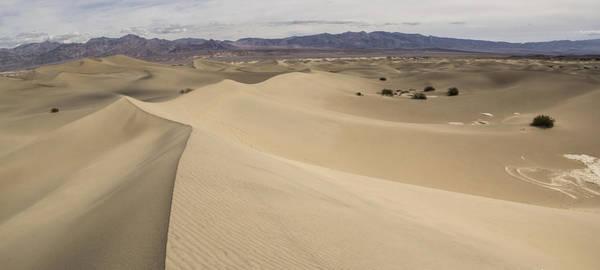 Death Valley Photograph - Dancing Sands by Brad Scott