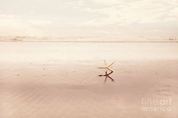 Wall Art - Photograph - Dancing Starfish Beach Photograph by Sylvia Cook