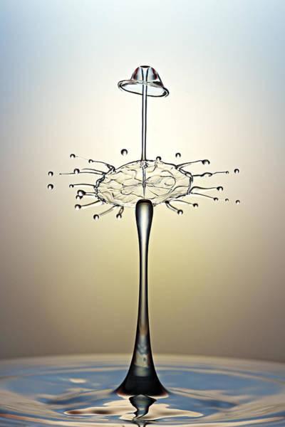 Photograph - Dancing Water Drops by Susan Candelario