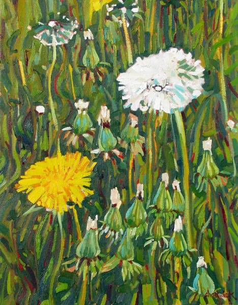 Birder Painting - Dandelion Bouquet by Phil Chadwick