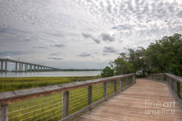 Photograph - Daniel Island Pathway by Dale Powell