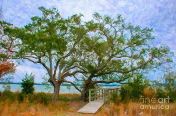 Digital Art - Daniel Island Sc by Dale Powell