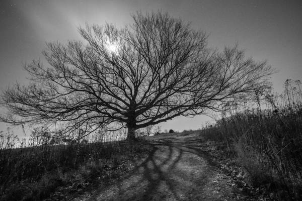 Pa Photograph - Dark And Twisted by Kristopher Schoenleber