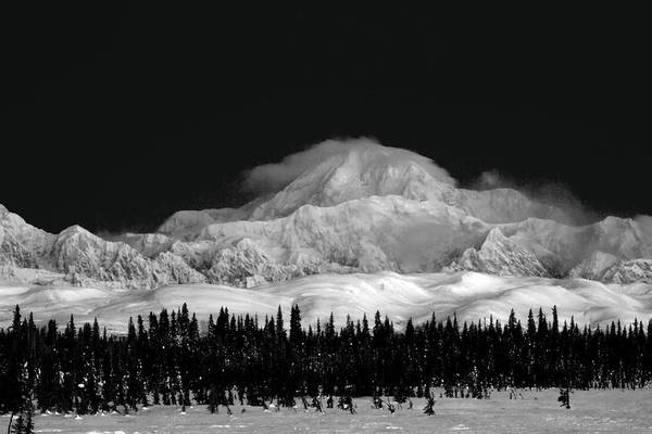 Photograph - Dark Contrast Mnt Mckinley  by Ed Boudreau