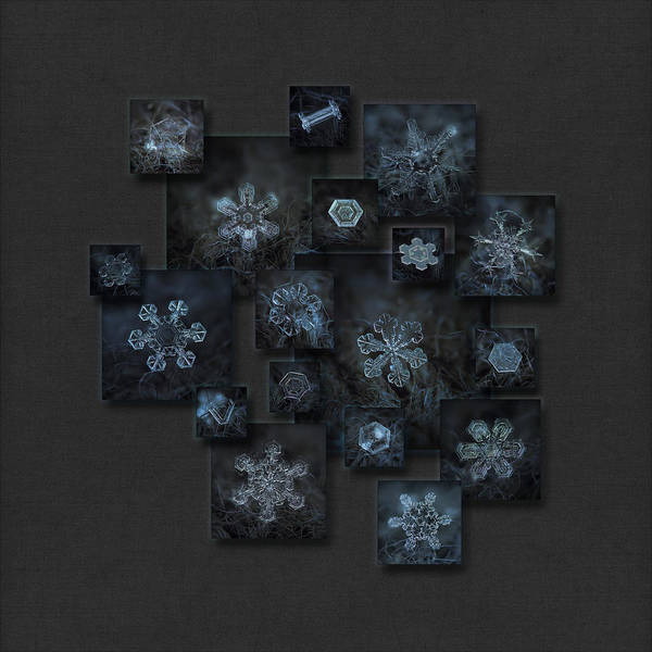 Photograph - Snowflake Collage - Dark Crystals 2012-2014 by Alexey Kljatov