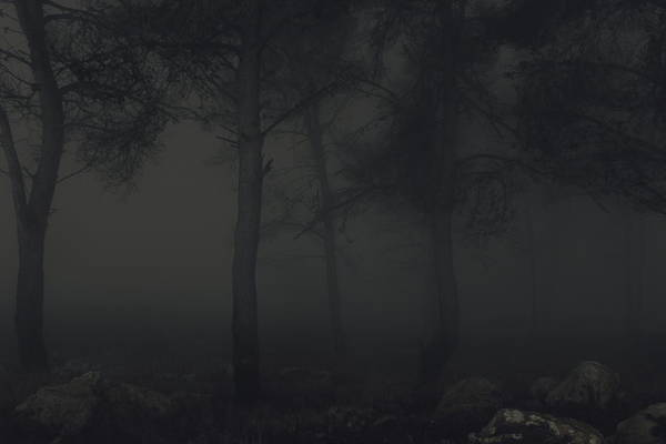Wall Art - Photograph - Dark Fog by Ran Yehezkel