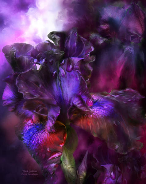 Purple Iris Mixed Media - Dark Goddess by Carol Cavalaris