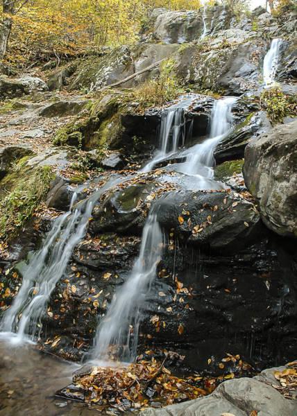 Photograph - Dark Hollow Falls by Lee Kirchhevel