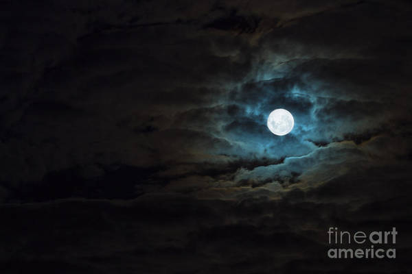 Full Moon Wall Art - Photograph - Dark Rising by Andrew Paranavitana