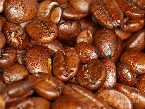 Photograph - Dark Roasted Coffee Beans by Nick  Biemans
