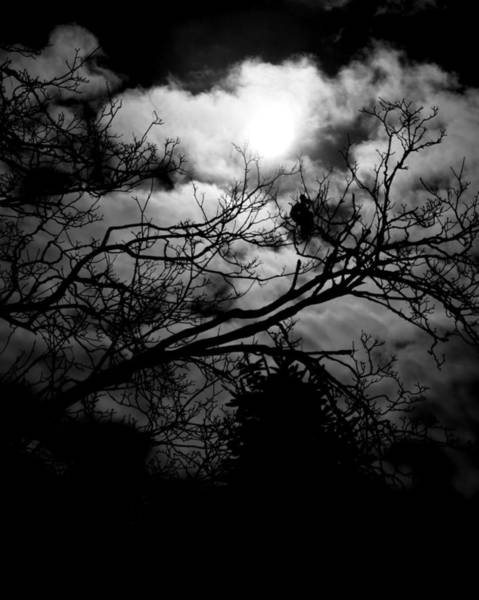 Photograph - Dark Sky by Toby McGuire