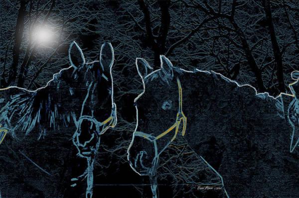 Photograph - Dark Stallions by Ericamaxine Price